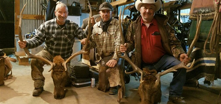 Code of the West Outfitters, Colorado's Premier Elk Hunting